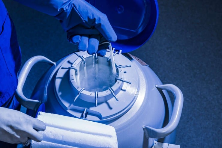 """""""A technology that allows us to peer into the actual DNA of the embryos that are created through the IVF process."""""""