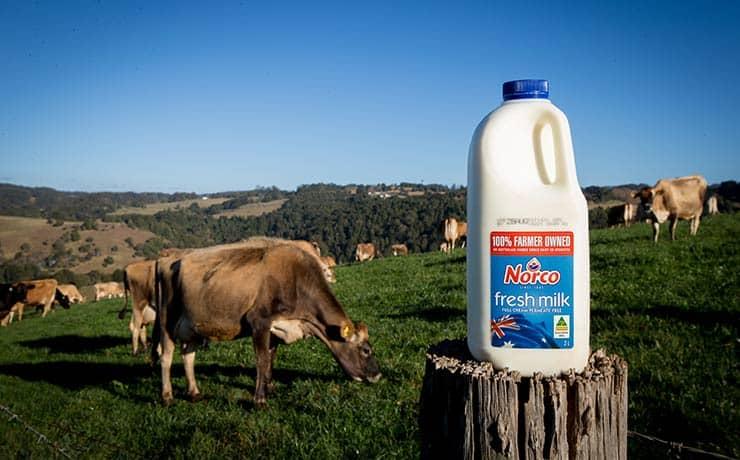 Norco-Milk-Norco-Foods-740x460_55K